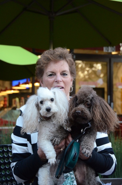 Cindy Wookey with poodles Otis and Chewie